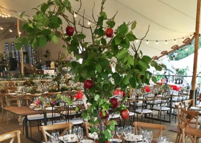 BODAS--MEDEMS-CATERING-795x530-9